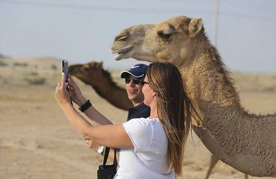 What to Expect On a Desert Safari in Abu Dhabi