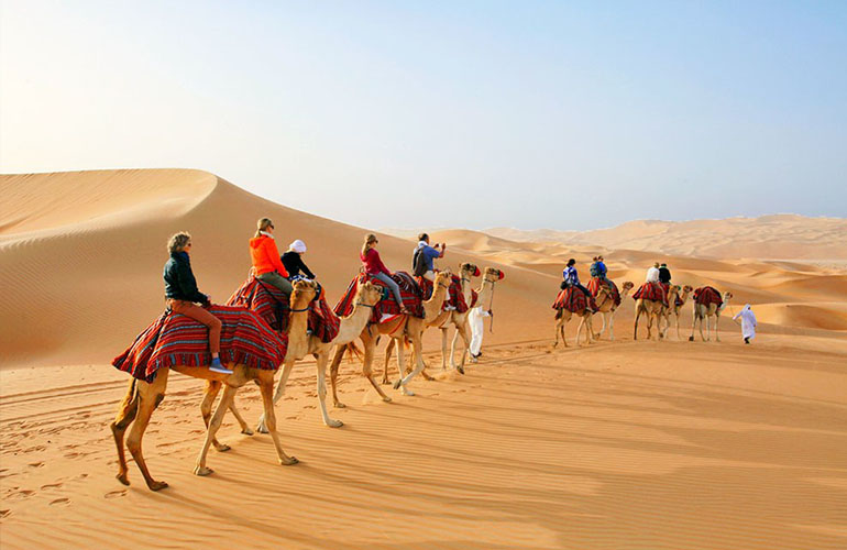 Camel Trekking in Abu Dhabi